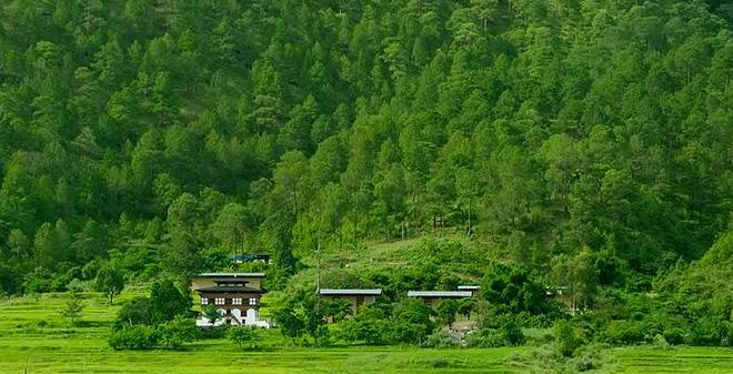 ecosystem of Bhutan
